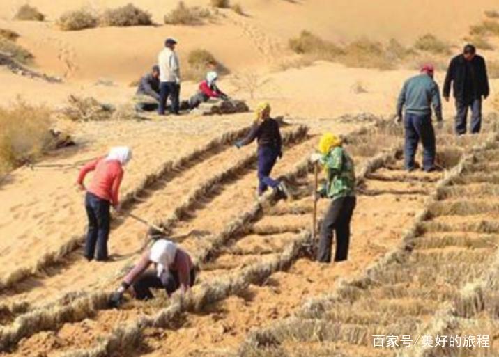 我国治理最大沙漠,却成了印度人口中的