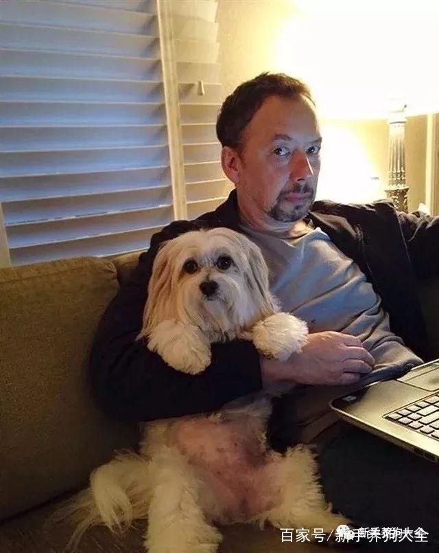 俺去也-人兽-狗狗fuck_一名兽医眼中,竟然在你的狗狗身上看到了50多种人兽共